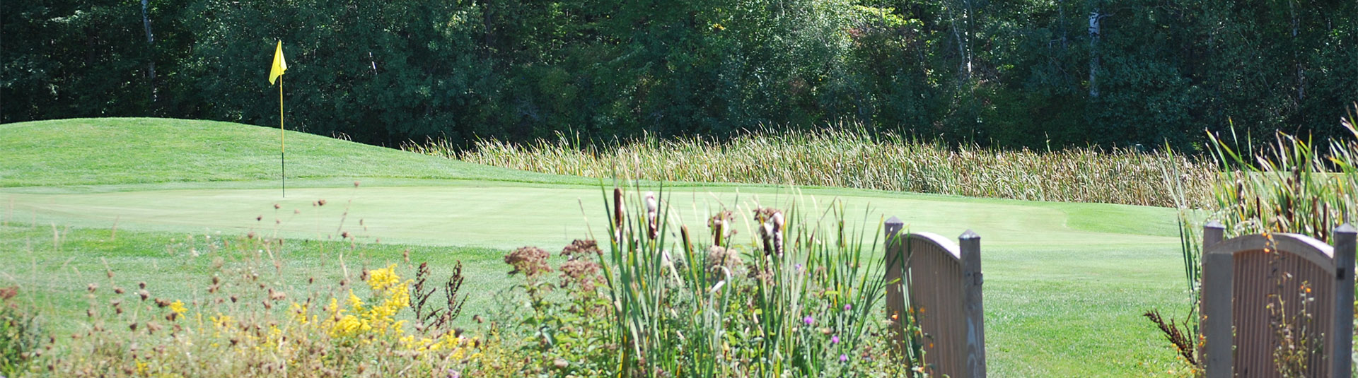Closeup of a hole on the course at Catamount Country Club