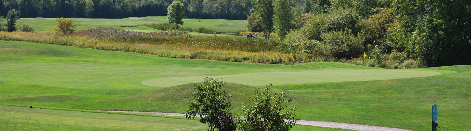 A group of golfers are seen in the distance on the course at Catamount Country Club